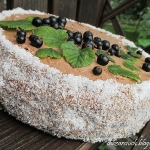 Tort porzeczkowo-kakaowy
