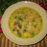 Zupa jarzynowa z rzodkiew...