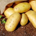 Ziemniaki- cudowny...