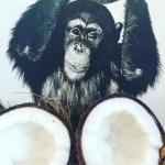 Domowe mleko kokosowe na ...