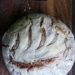 Chleb jak z Altamury - cz...