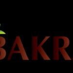 Współpraca z Bakra.pl