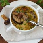 Szybka zupa z swiezych gr...