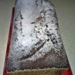 Comber czekoladowy