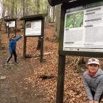 Wzgórza Strzelińskie:...