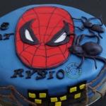Tort Spider-Man
