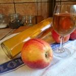 domowe wino z jabłek