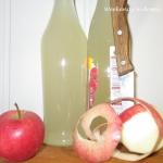 Ocet z jablkowych obierko...
