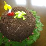 tort zabi kopiec
