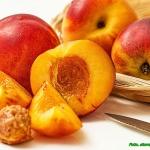 Koktajl owocowy -...