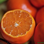 Likier z  mandarynek.