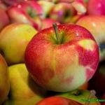 Racuszki z jabłkami.