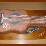 Gra Gitara