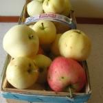 Co z tymi jablkami???