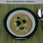 Zupa brokułowa z serem...