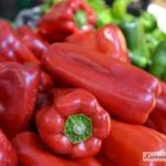 Papryka czerwona w kuchni