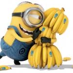 koktajle z bananami i...