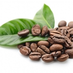 Kofeina-pomocna przy...