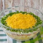 Salatka  Goscie chwala