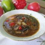 Jarzynowa zupa na winie