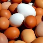 Jak sparzyć jajka –...