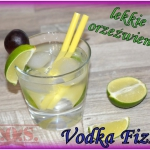 Drink Vodka Fizz