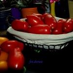 Suszone pomidory w...