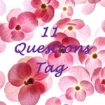 Tag:  11 pytań