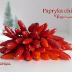 Papryczka chili -...