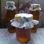 Domowy syrop z melisy