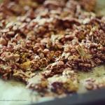 granola rabarbarowa
