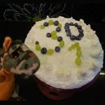 Niebiesko-zielony tort...