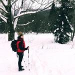 Zimowe Bieszczady -...