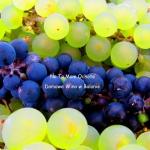 Domowe Wino z Białych...