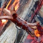 Kiełbasa z ogniska