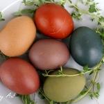 Jajka barwione naturalnie
