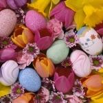Wielkanocne życzenia :-)